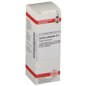 DHU Justicia adhatoda D6 Dilution