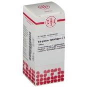 DHU Manganum metallicum D12 Tabletten