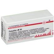 DHU Pulsatilla LM XII Globuli