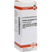 DHU Scorpio europaeus D6 Dilution