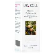 DR. KOLL Quercus Pedunculata Gemmoextrakt Eiche