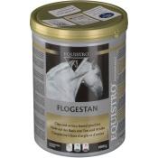 Equistro® Flogestan