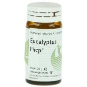 Eucalyptus Phcp®