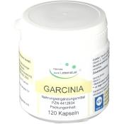GARCINIA Cambogia 60 % Vegi