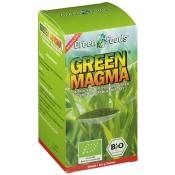 Green Magma Gerstengrasextrakt Pulver