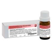 Hypericum D12 Globuli