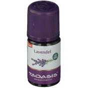 Lavendel fein Bio Öl