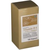 Leinersan®s Vitamin B6 + B12 Folsäure Kapseln