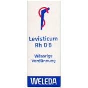 Levisticum Rh D 6 Dilution