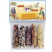 Mini Pop Corn