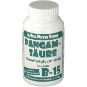 PANGAMSAEURE B15 50 mg vegetarische Kapseln
