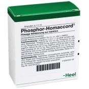 Phosphor-Homaccord® Ampullen