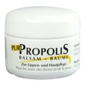 Propolis Pur Lippenbalsam
