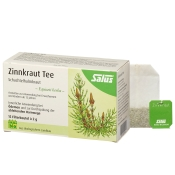 Salus® Arzneitee Zinnkraut Schachtelhalmkraut bio