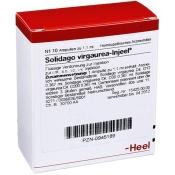 Solidago virgaurea-Injeel® Ampullen