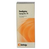 Synergon 73 Eucalyptus Tropfen