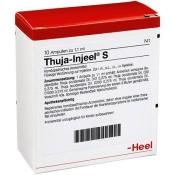 Thuja-Injeel® S Ampullen