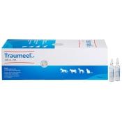 Traumeel® LT ad us. vet.