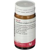 WALA® Aconitum e tubere D 20