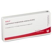 WALA® Ligamentum longitudinale anterius Gl D 12