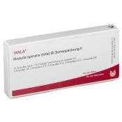WALA® Medulla spinalis tota Gl Serienpackung 2