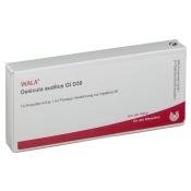 WALA® Ossicula auditus Gl D 30
