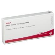 WALA® Regio substantiae nigrae Gl D 8
