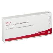 WALA® Solidago virgaurea ex herba D 6