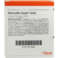 Adrenalin-Injeel® forte Ampullen