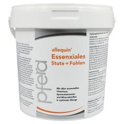 allequin® Essenxiales Stute + Fohlen