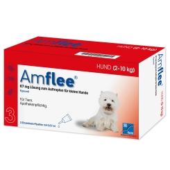 Amflee® 67 mg für kleine Hunde