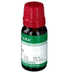 ARCANA® Formica rufa