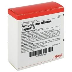 Arsenicum album-Injeel® S Ampullen