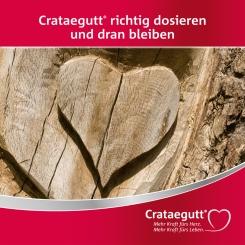 B. Crataegutt Broschüren