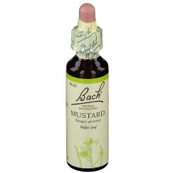 BACH®-BLÜTE MUSTARD (Wilder Senf)