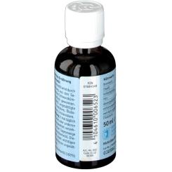 BIO-DIÄT-BERLIN Ägyptisches Schwarzkümmelöl