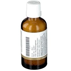 BIOCHEMIE Senagold 10 Natrium sulfuricum D 12