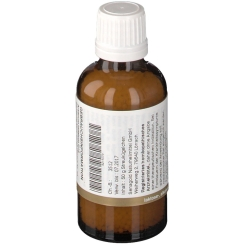 BIOCHEMIE Senagold 24 Arsenum jodatum D12