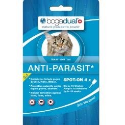 bogadual Anti-Parasit Spot-on für Katzen