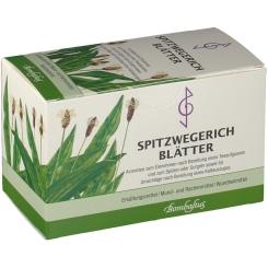Bombastus Spitzwegerich Blätter