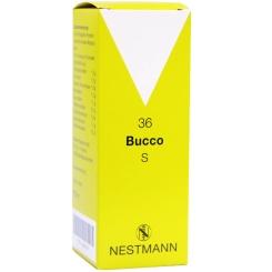 Bucco Nestmann