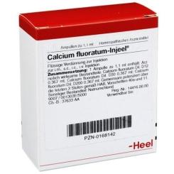 Calcium Fluoratum Injeel® Ampullen