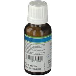 Canina® PETVITAL® Magnesium phosphoricum D6 Nr.7