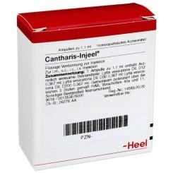 Cantharis-Injeel® Ampullen