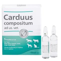 Carduus Compositum ad us. vet.