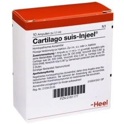 Cartilago suis-Injeel® forte Ampullen