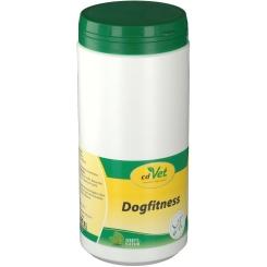 cd Vet Dogfitness