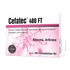 Cefatec® 480 FT