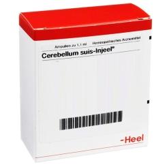 Cerebellum suis-Injeel® Ampullen