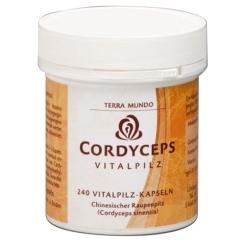 Cordyceps Vitalpilz Kapseln